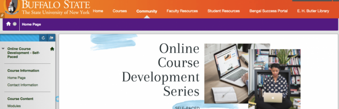 picture of the blackboard online course development page
